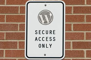 10 Useful WordPress Security Tweaks