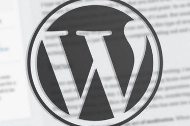 WordPress Theme Trends For 2012