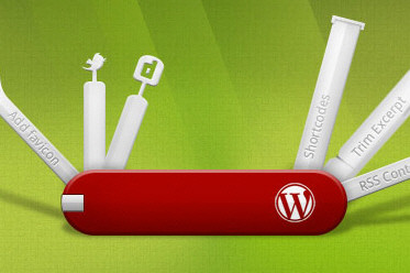 10 Tips To Optimize Your WordPress Theme