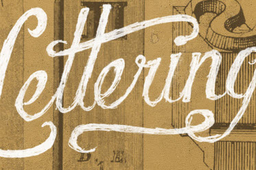 Understanding The Difference Between Type And Lettering